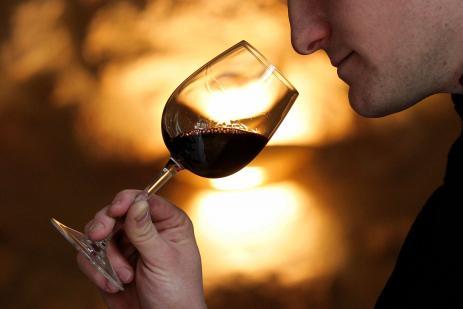 Le vin : histoire, consommation, acteurs