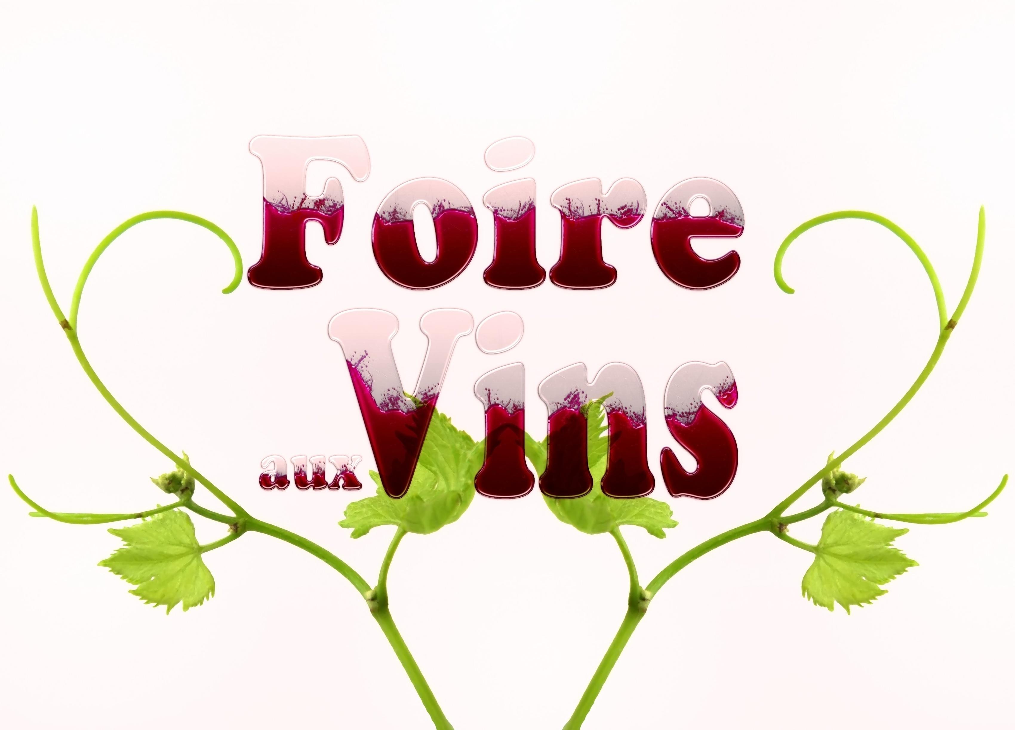 Les foires aux vins: événements incontournables