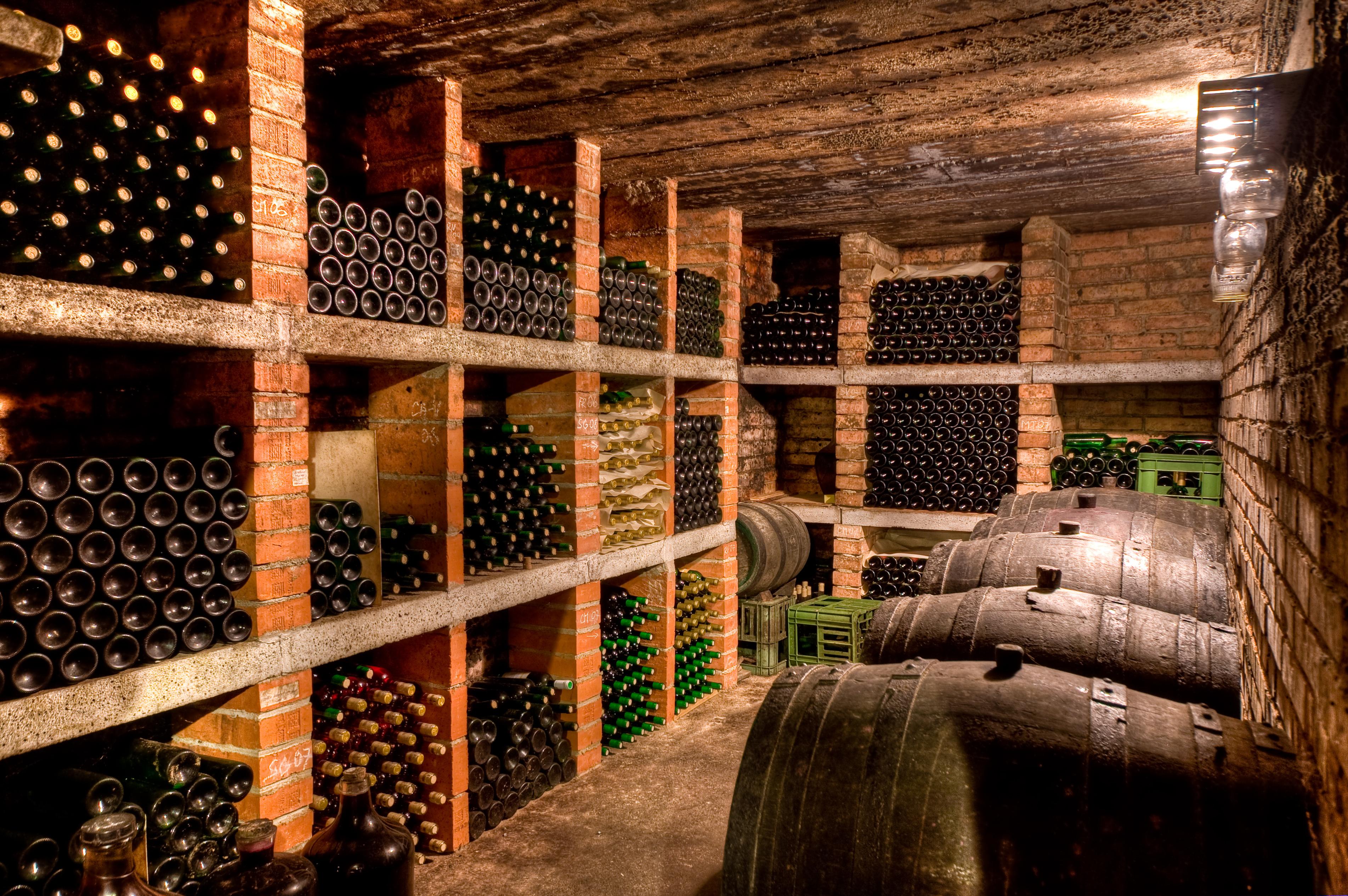 Une cave à vin à votre goût